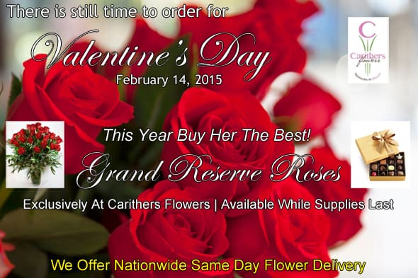 Carithers Flowers Email Blast 590